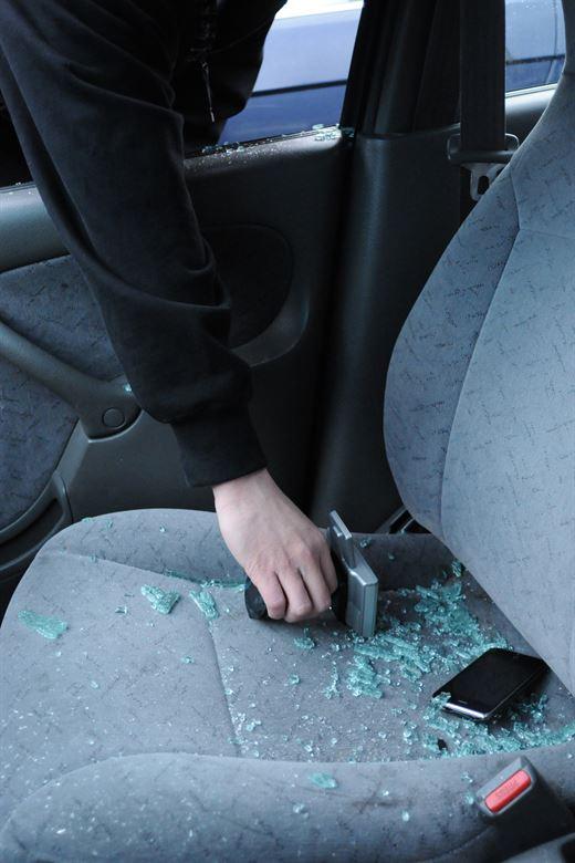 type auto alarmsystemen